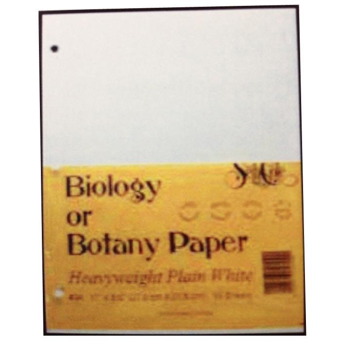 Botany summary essays