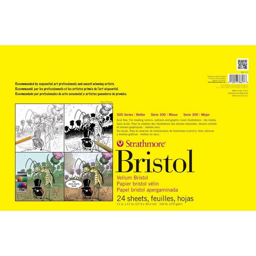 Strathmore 300 Series Sequential Art Bristol