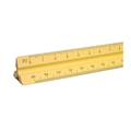 "12"" Plastic Engineering Scale - Yellow"