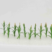 WS00306 : Wee Scapes Corn Stalks 1In 12-Pack
