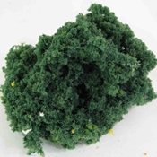 WS00342 : Wee Scapes Foliage Medium Green Bush 150 sq. in.