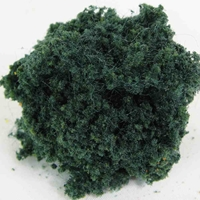 WS00344 : Wee Scapes Foliage Dark Green Bush 150 sq. in.
