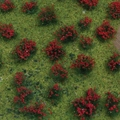 Meadow Sheet - Flowering Red